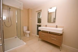 Springtown Bathroom Remodel