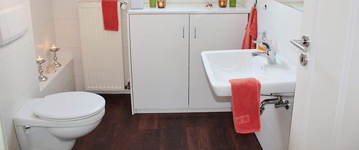 bright bathroom with wood flooring